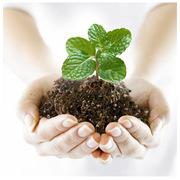 Продаем средства защиты растений оптом по доступным ценам