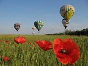 Полетать на воздушном шаре в  Украине