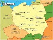 Високооплачувана офіційна робота в Польщі. Довозимо до місця праці.